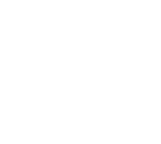 Challenges and work